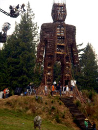 First pics of <b>The Wicker Man</b>